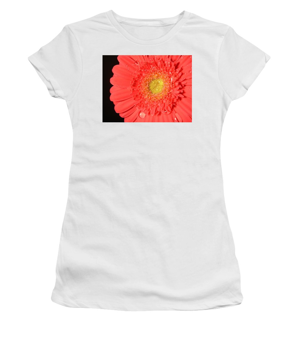Gerbera Photographs Photographs Photographs Women's T-Shirt (Athletic Fit) featuring the photograph 3264 by Kimberlie Gerner