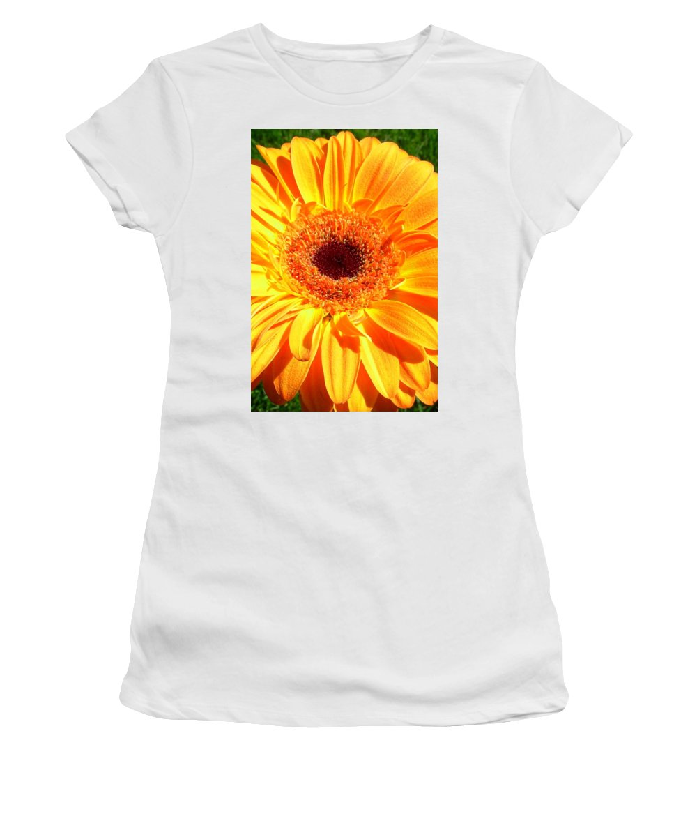 Gerbera Photographs Photographs Photographs Women's T-Shirt (Athletic Fit) featuring the photograph 3410-005 by Kimberlie Gerner
