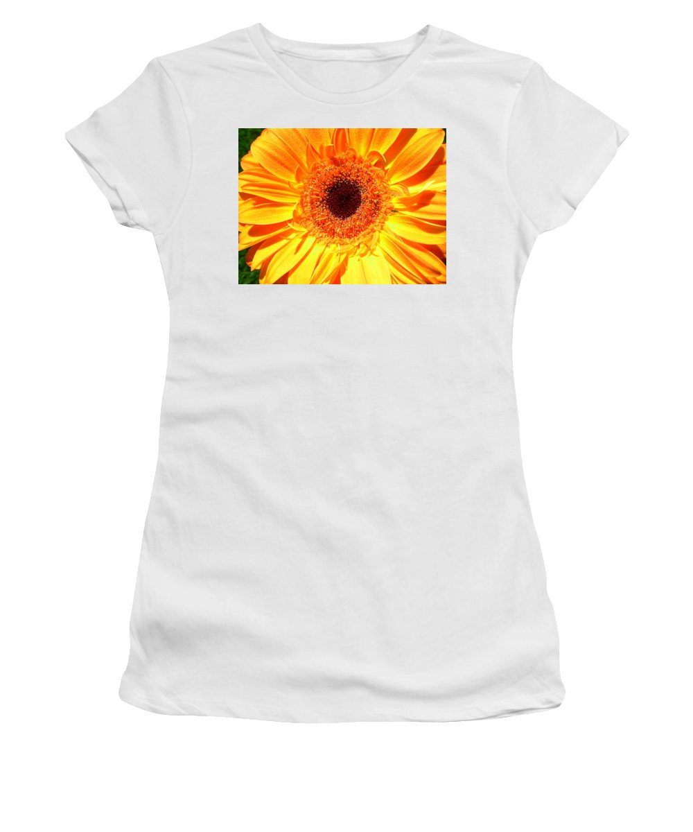 Gerbera Photographs Photographs Photographs Women's T-Shirt (Athletic Fit) featuring the photograph 3414 by Kimberlie Gerner
