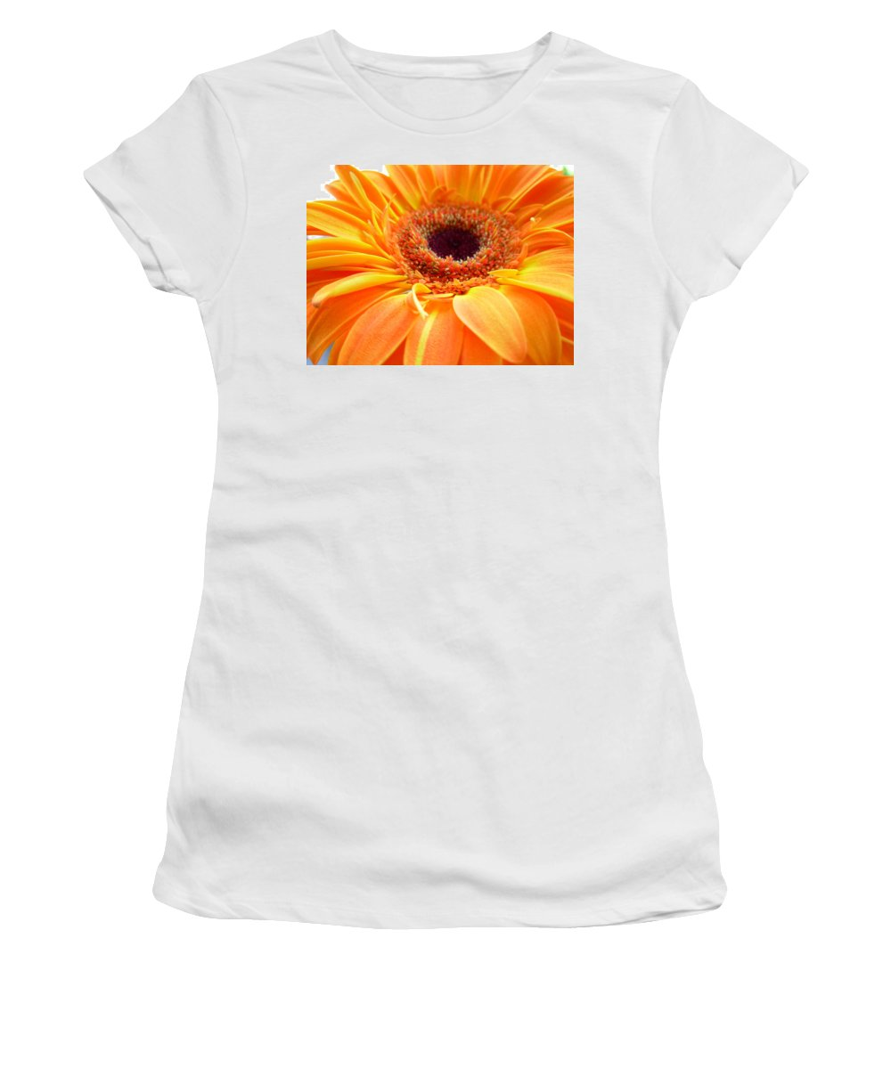 Gerbera Photographs Photographs Photographs Women's T-Shirt (Athletic Fit) featuring the photograph 3417 by Kimberlie Gerner