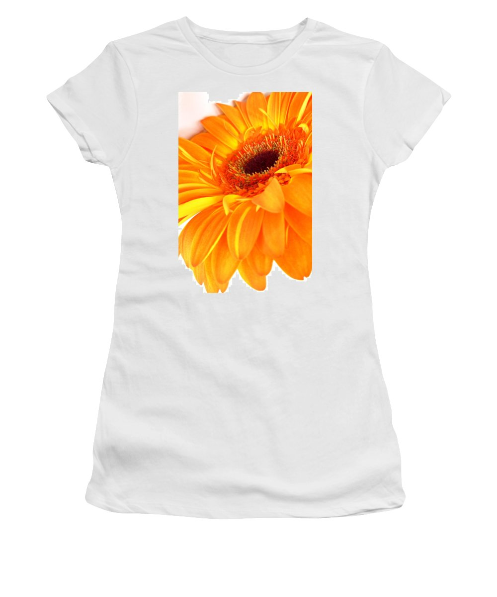 Gerbera Photographs Photographs Photographs Women's T-Shirt (Athletic Fit) featuring the photograph 3562-005 by Kimberlie Gerner