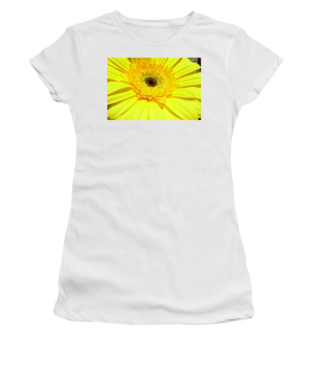 Gerbera Photographs Photographs Photographs Women's T-Shirt (Athletic Fit) featuring the photograph 3957-001 by Kimberlie Gerner