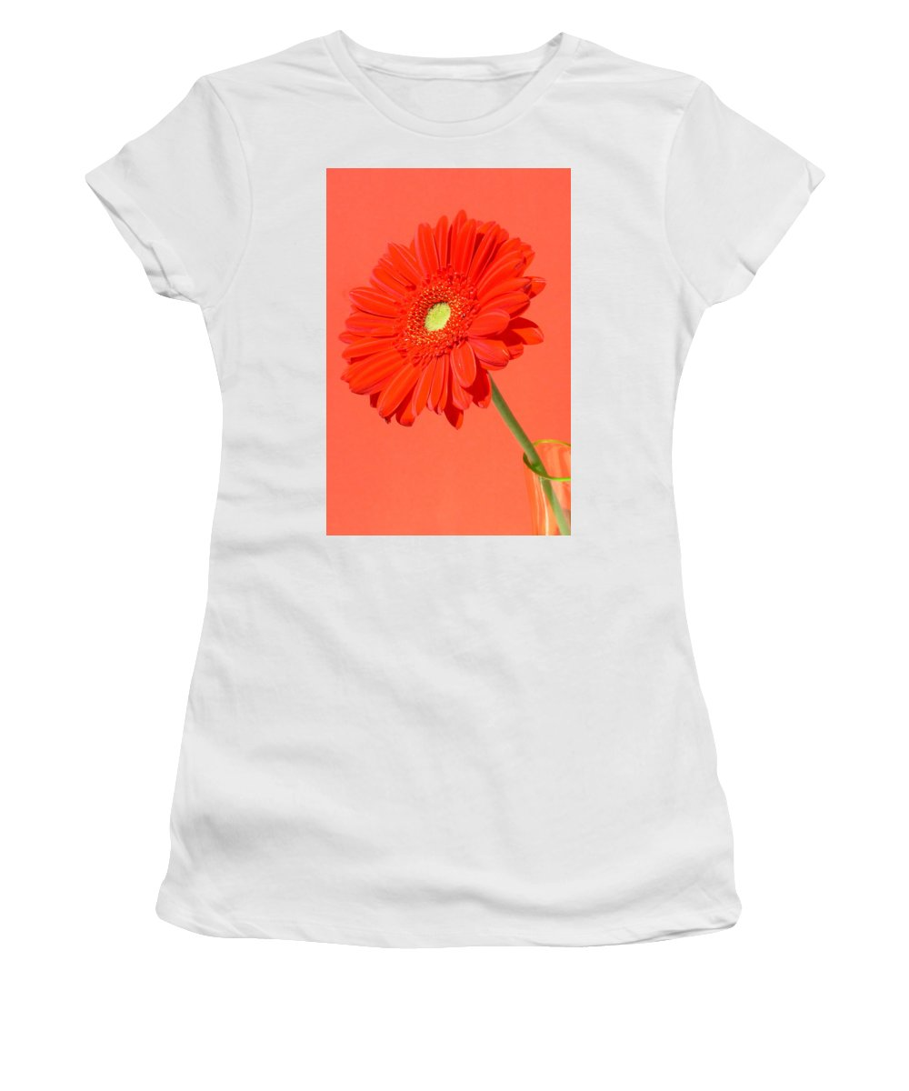 Gerbera Photographs Photographs Photographs Women's T-Shirt (Athletic Fit) featuring the photograph 3990-001 by Kimberlie Gerner