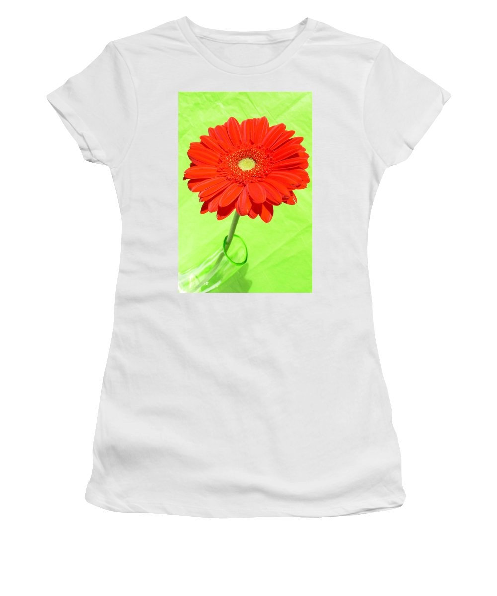 Gerbera Photographs Photographs Photographs Women's T-Shirt (Athletic Fit) featuring the photograph 3997-001 by Kimberlie Gerner