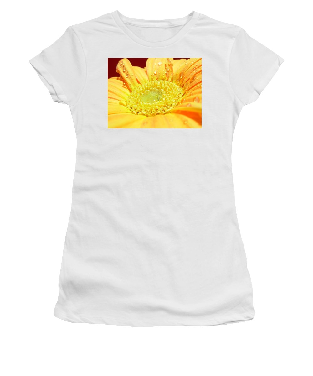 Gerbera Photographs Photographs Photographs Women's T-Shirt (Athletic Fit) featuring the photograph 4174 by Kimberlie Gerner