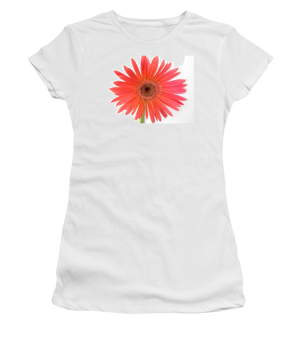Gerbera Photographs Photographs Photographs Women's T-Shirt (Athletic Fit) featuring the photograph 4961 by Kimberlie Gerner