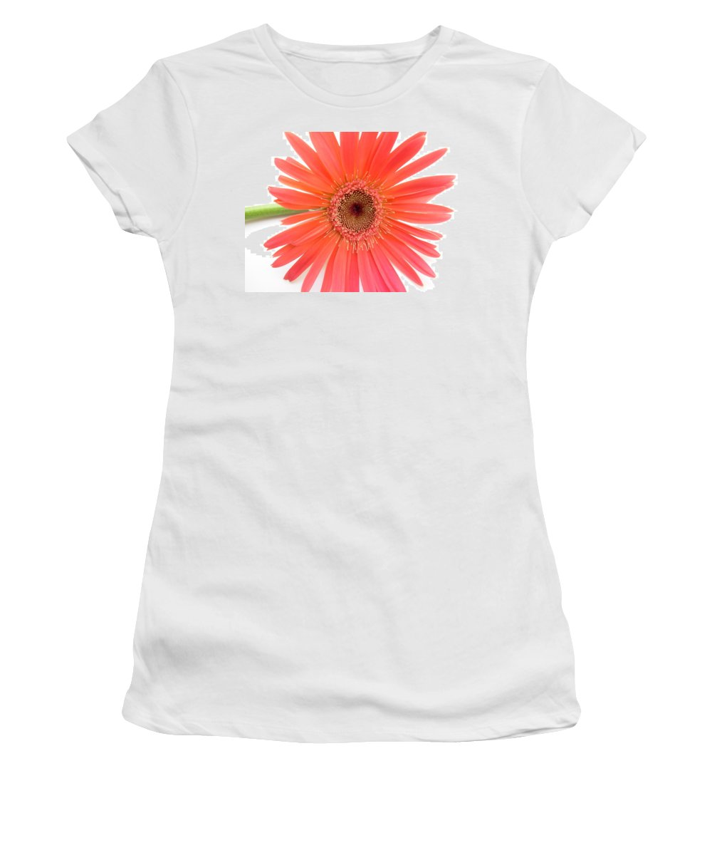 Gerbera Photographs Photographs Photographs Women's T-Shirt (Athletic Fit) featuring the photograph 4969 by Kimberlie Gerner
