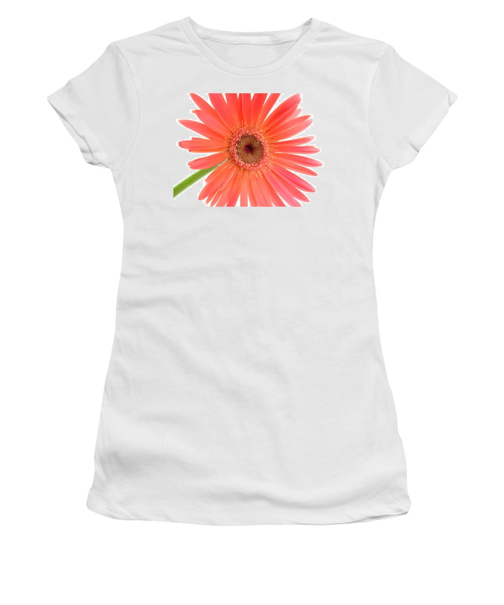 Gerbera Photographs Photographs Photographs Women's T-Shirt (Athletic Fit) featuring the photograph 4989 by Kimberlie Gerner
