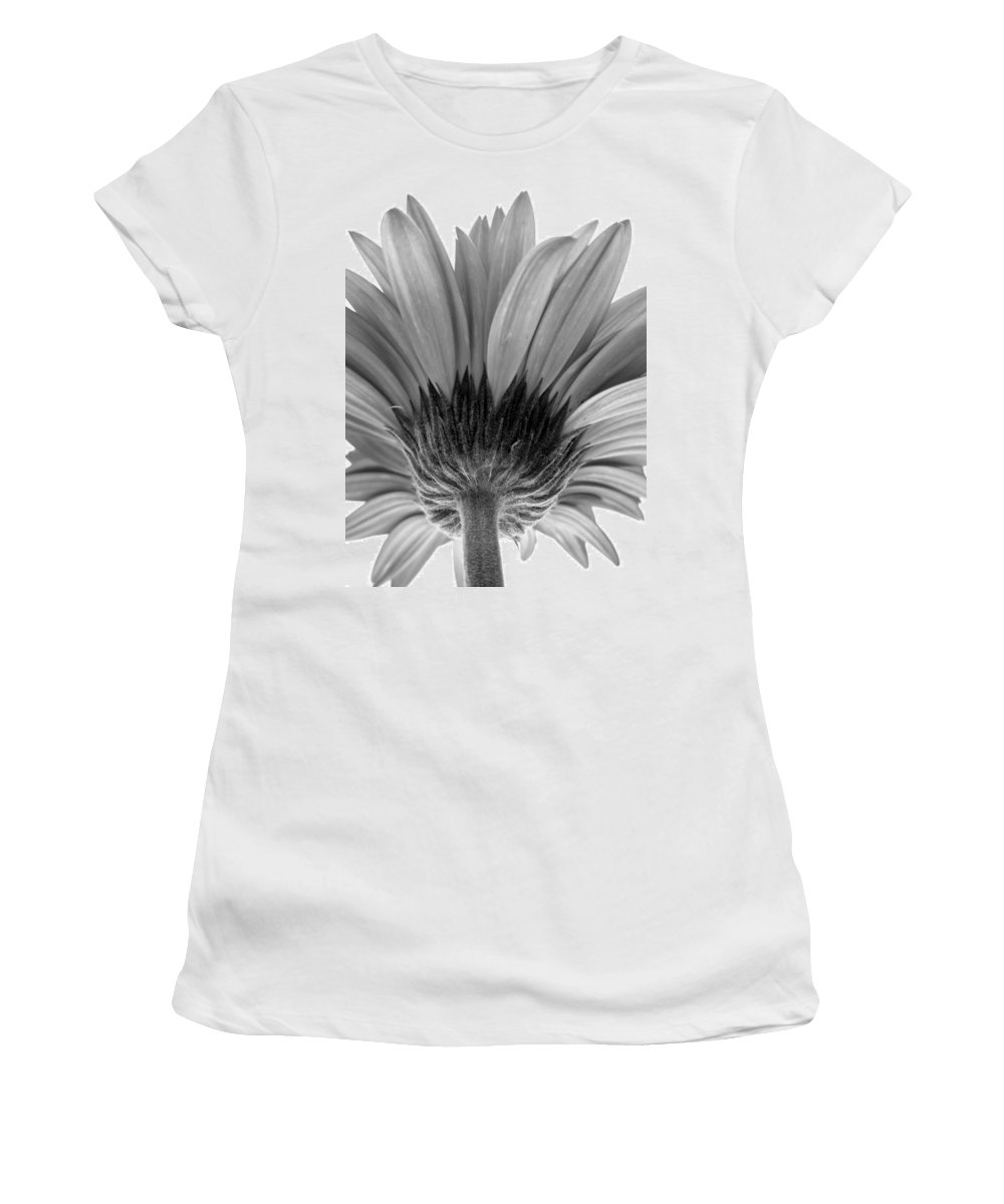 Gerbera Photographs Photographs Photographs Women's T-Shirt (Athletic Fit) featuring the photograph 5574-31c by Kimberlie Gerner