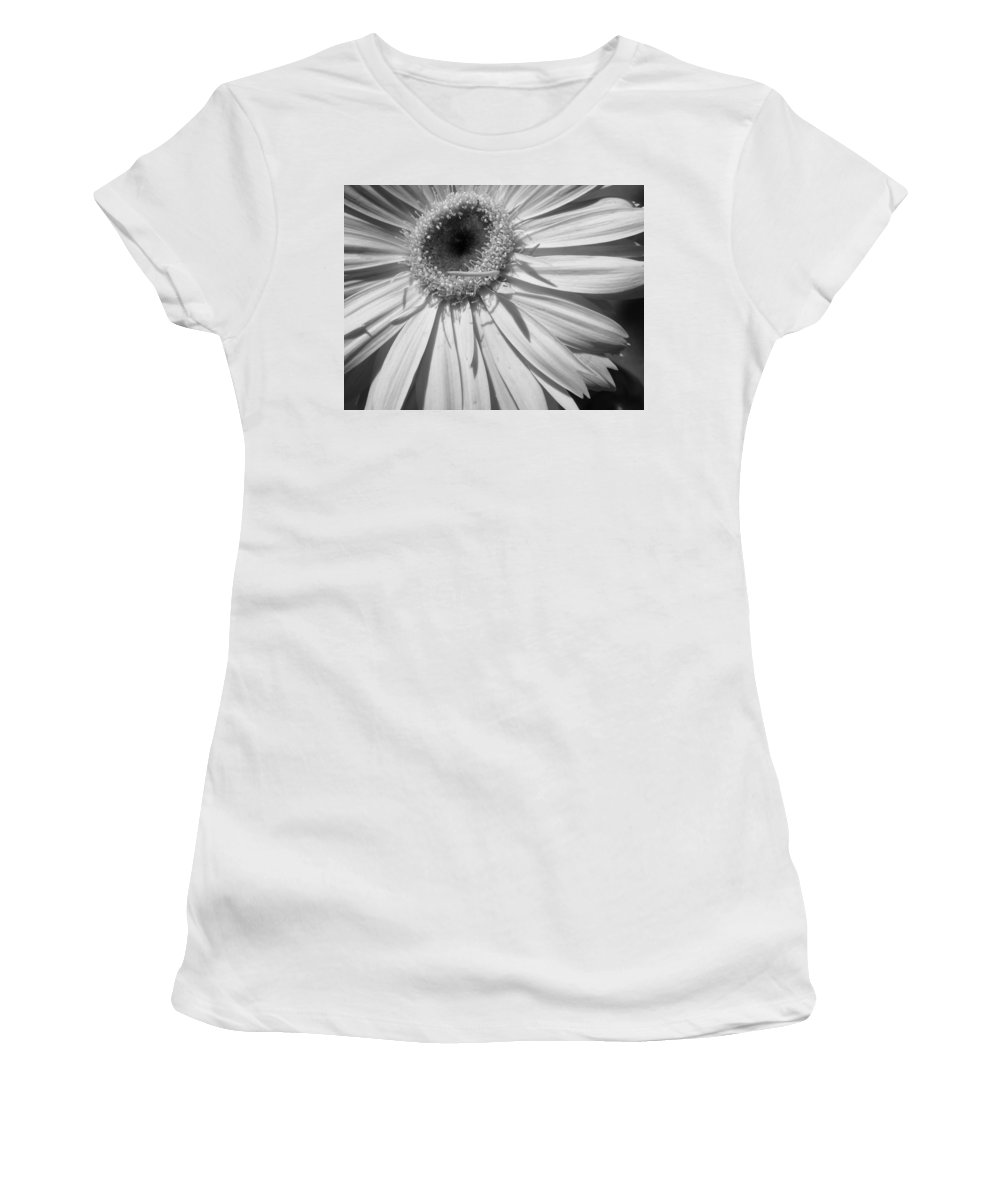 Gerbera Photographs Photographs Photographs Women's T-Shirt (Athletic Fit) featuring the photograph 6204 by Kimberlie Gerner