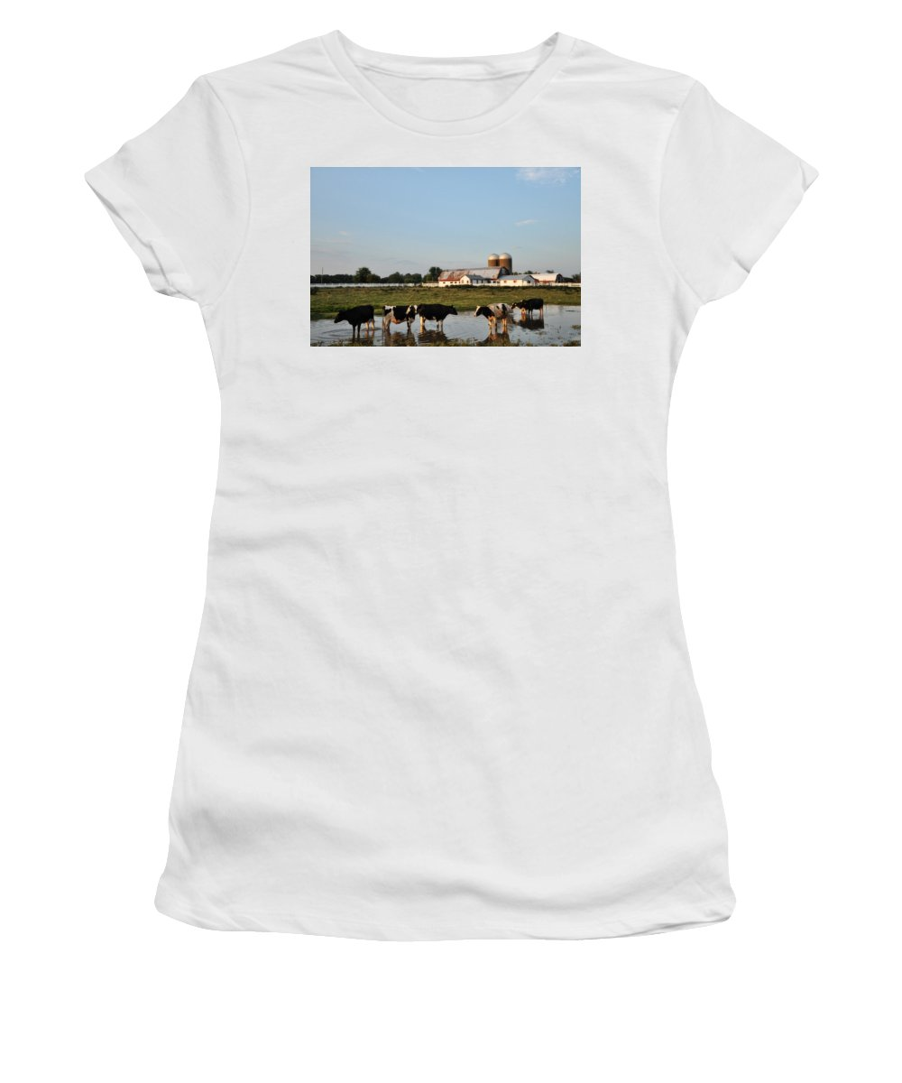 A Cow's Day At The Beach Women's T-Shirt (Athletic Fit) featuring the photograph A Cow's Day At The Beach by Bill Cannon