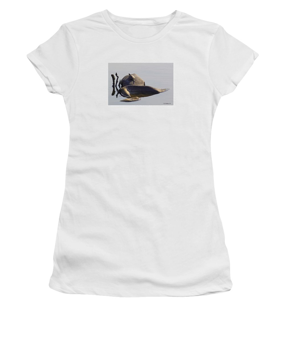 2d Women's T-Shirt featuring the photograph All By Myself by Brian Wallace