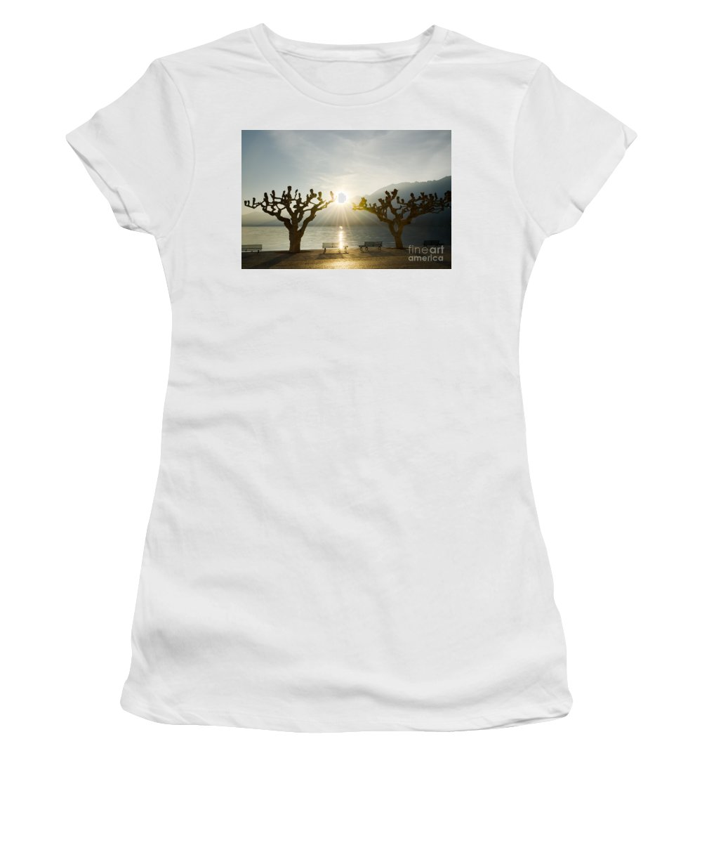 Benches Women's T-Shirt (Athletic Fit) featuring the photograph Benches And Trees On The Lakefront by Mats Silvan