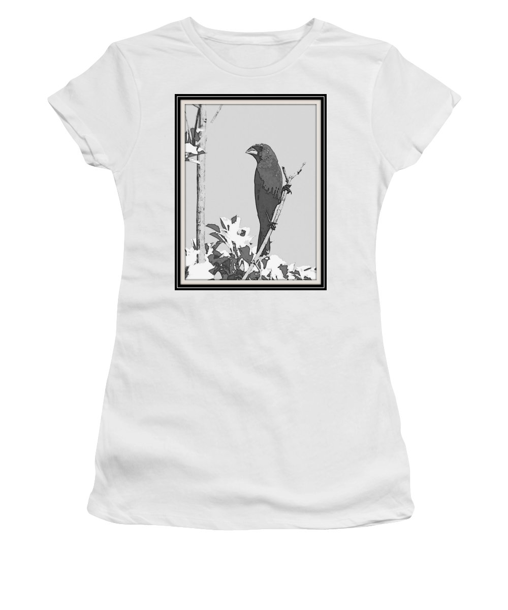 Blue Grosbeak Women's T-Shirt (Athletic Fit) featuring the photograph Blue In Black And White by Travis Truelove