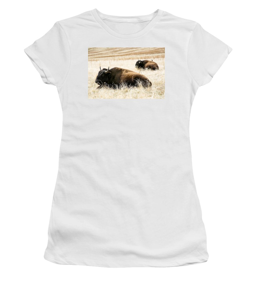 Utah Women's T-Shirt (Athletic Fit) featuring the photograph Buff And Friend 2 by Marilyn Hunt