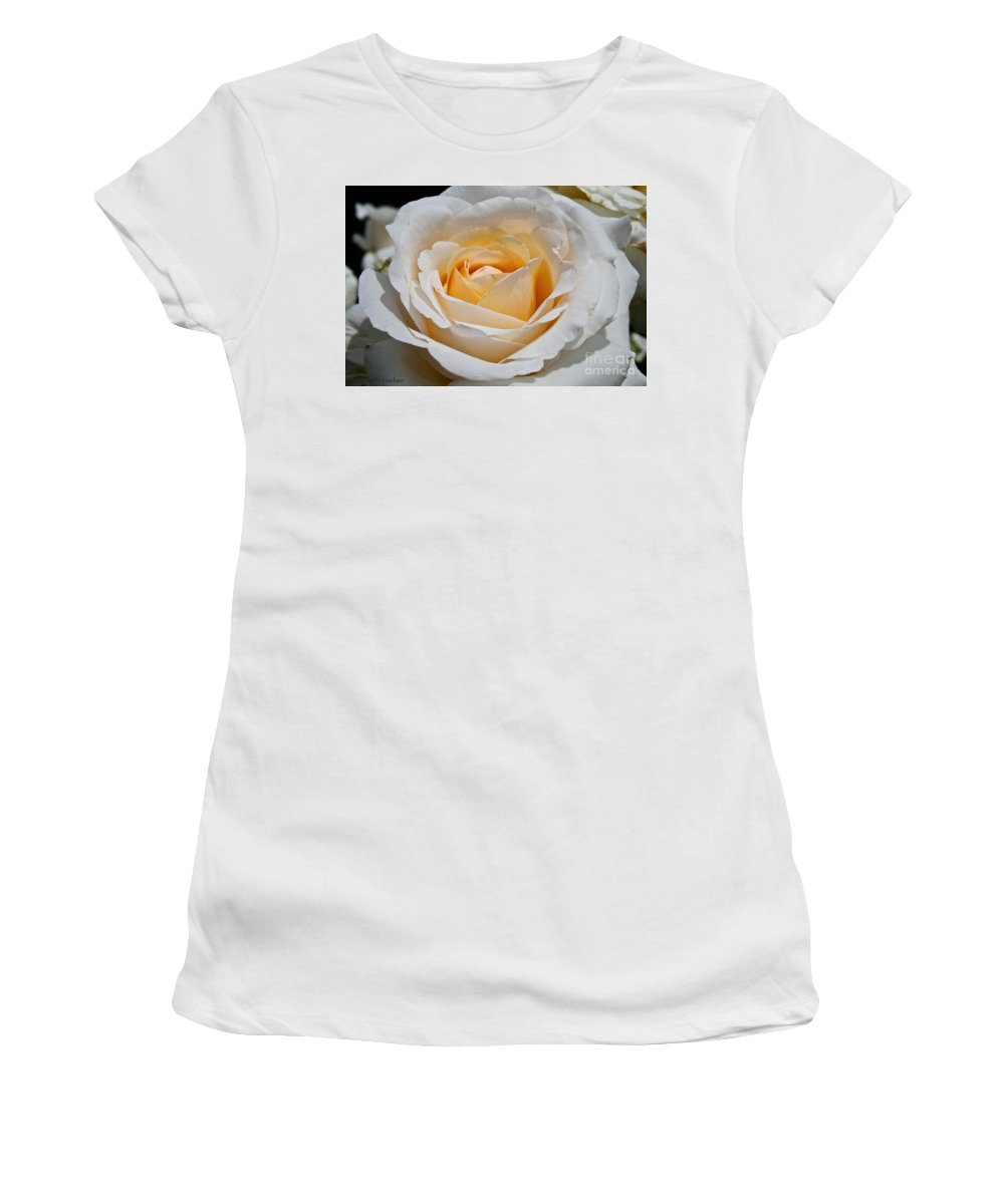 Outdoors Women's T-Shirt (Athletic Fit) featuring the photograph Common Wealth Glory Rose by Susan Herber