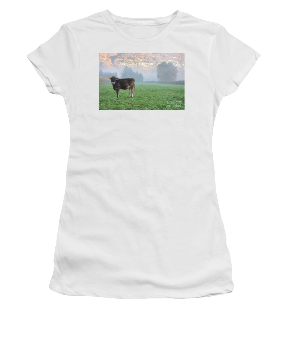Cow Women's T-Shirt (Athletic Fit) featuring the photograph Cow On The Foggy Field by Mats Silvan