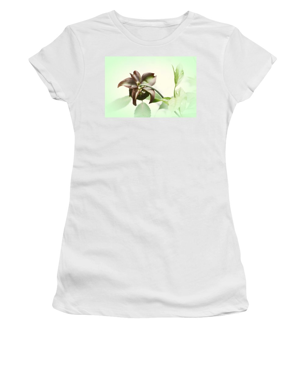 Dainty Women's T-Shirt (Athletic Fit) featuring the photograph Dainty by Karol Livote
