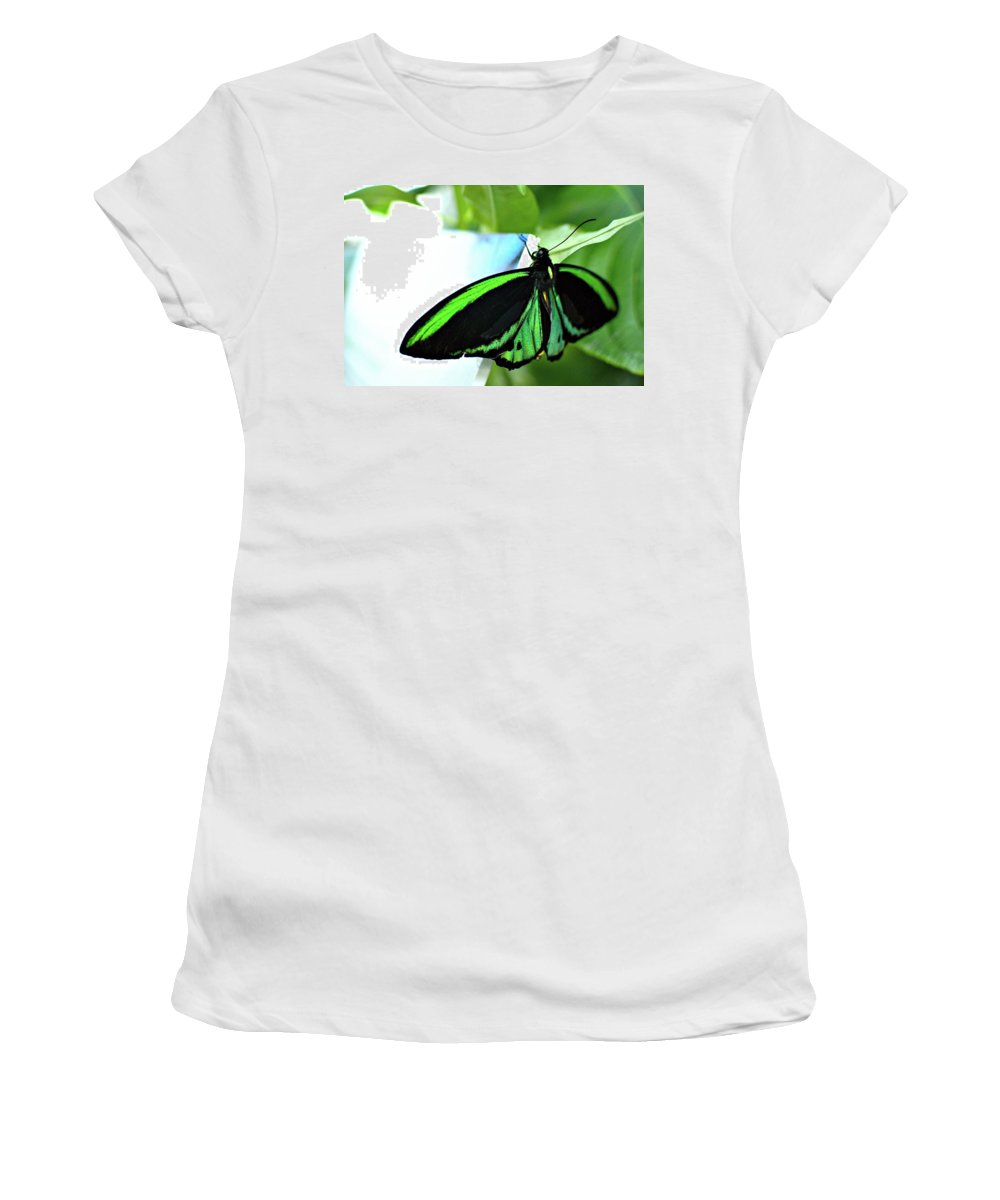 Male Green Birdwing Women's T-Shirt featuring the photograph Echoes by Floyd Menezes