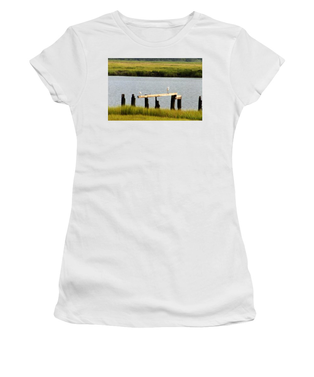 Egrets In The Salt Marsh Women's T-Shirt (Athletic Fit) featuring the photograph Egrets In The Salt Marsh by Bill Cannon