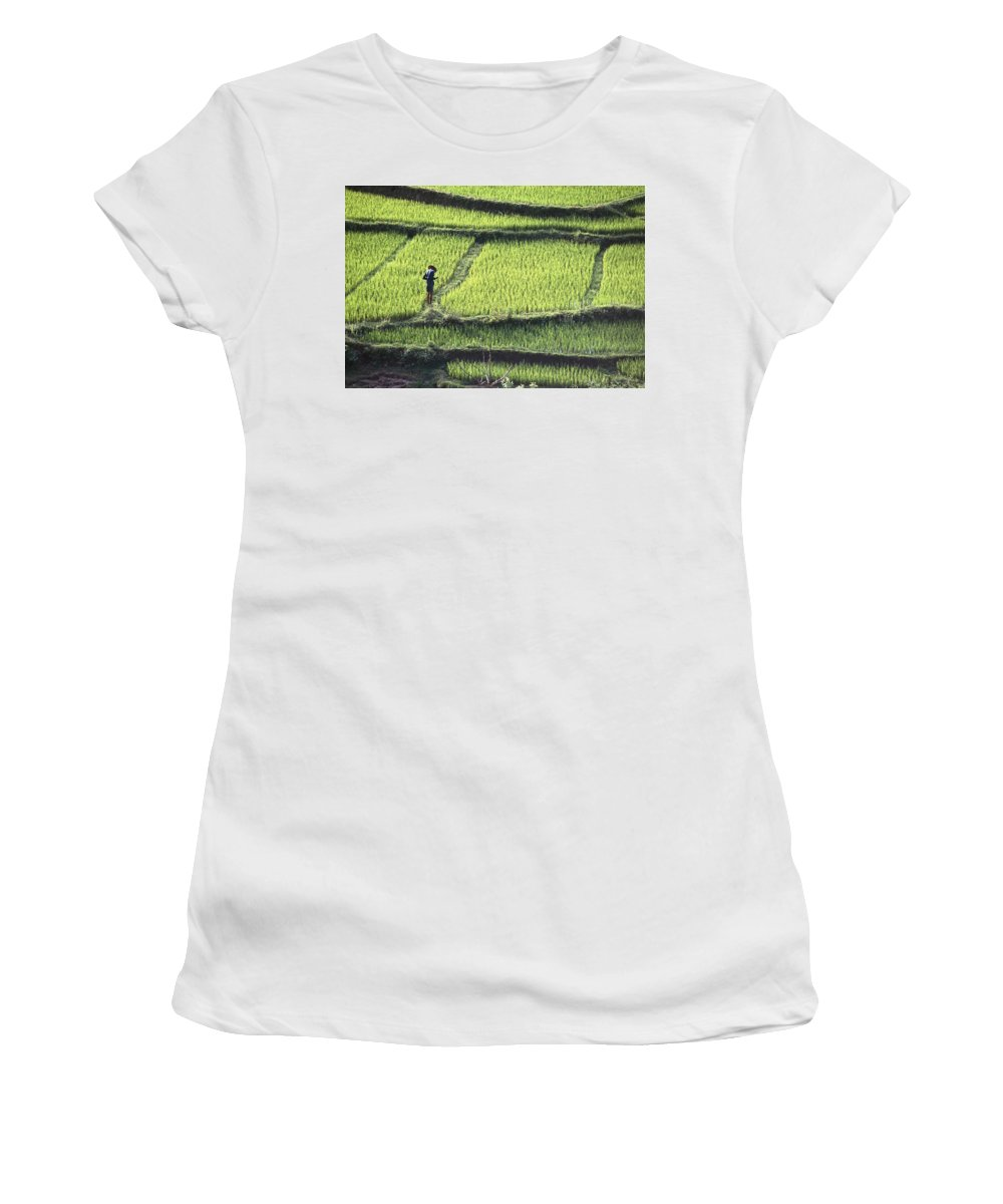 Photography Women's T-Shirt (Athletic Fit) featuring the photograph Farmer In Rice Paddy, Elevated View by Axiom Photographic