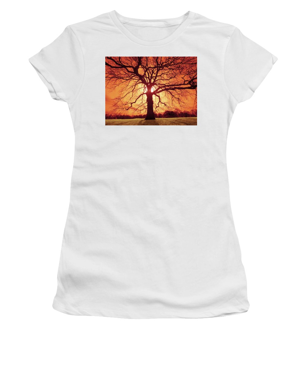Oak Women's T-Shirt (Athletic Fit) featuring the photograph Flaming Oak by Andy Linden