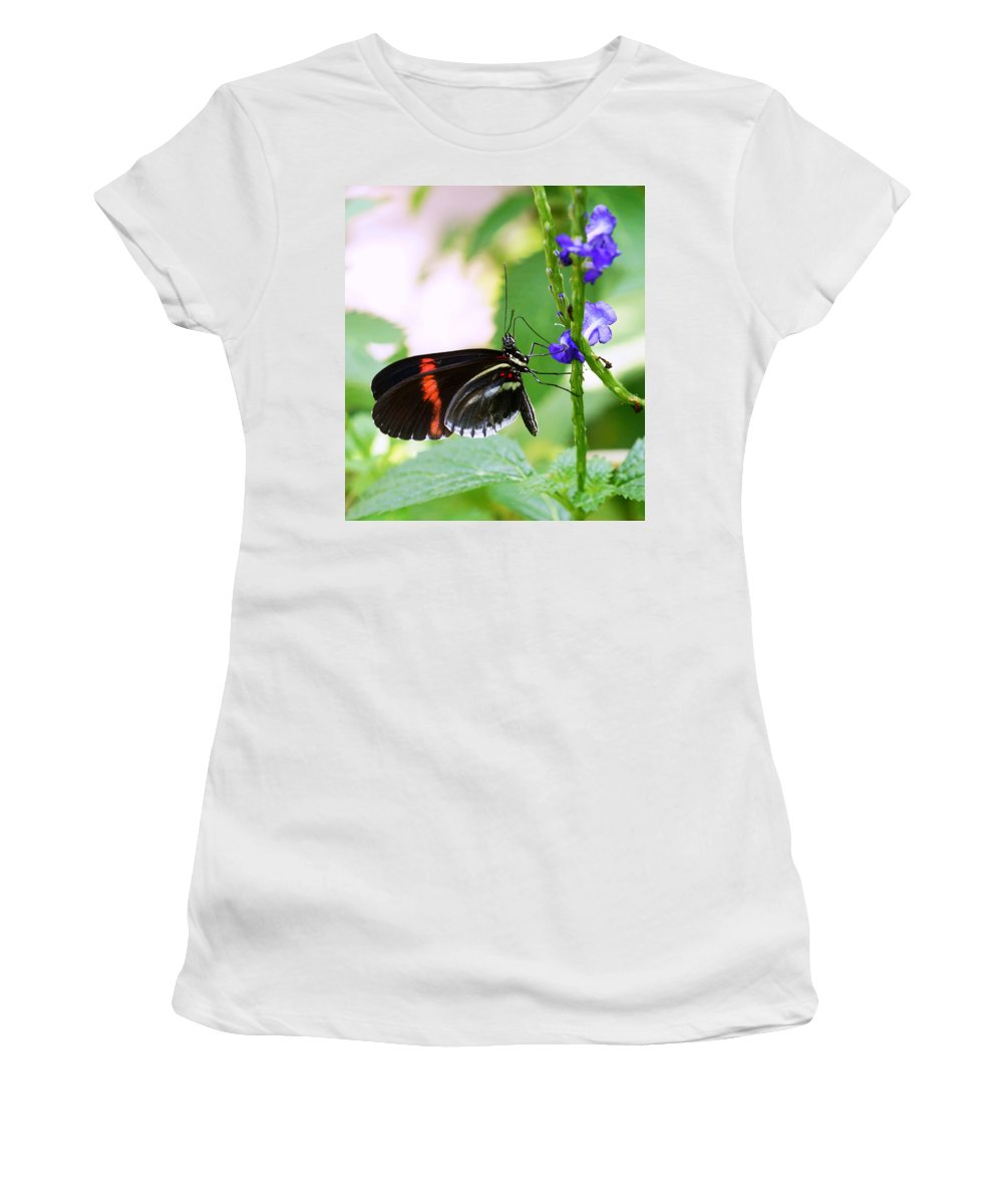 Butterfly Women's T-Shirt featuring the photograph Just Hanging Out by Sumi Martin