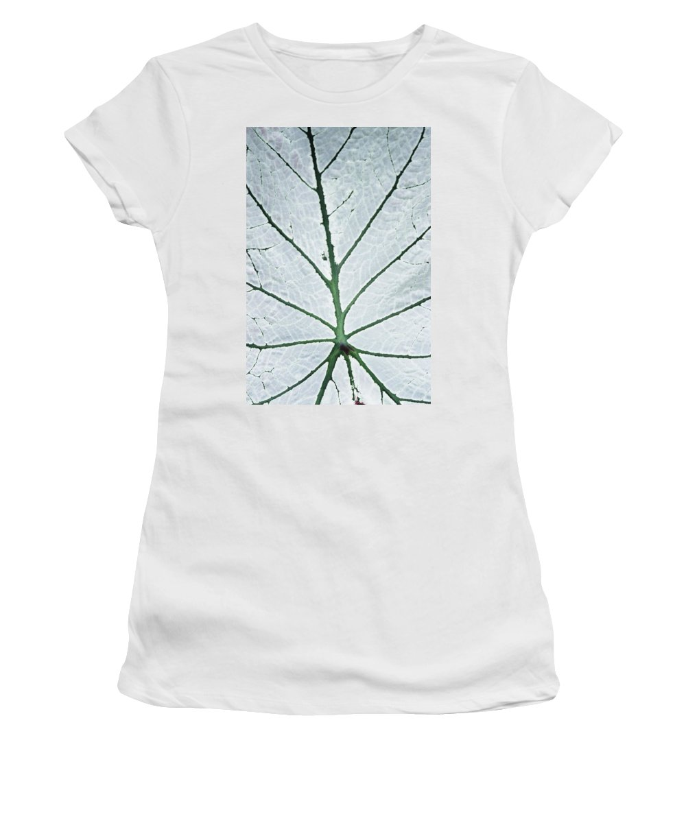 White Women's T-Shirt (Athletic Fit) featuring the photograph Leaf Hortus Botanicus, Close-up by Axiom Photographic