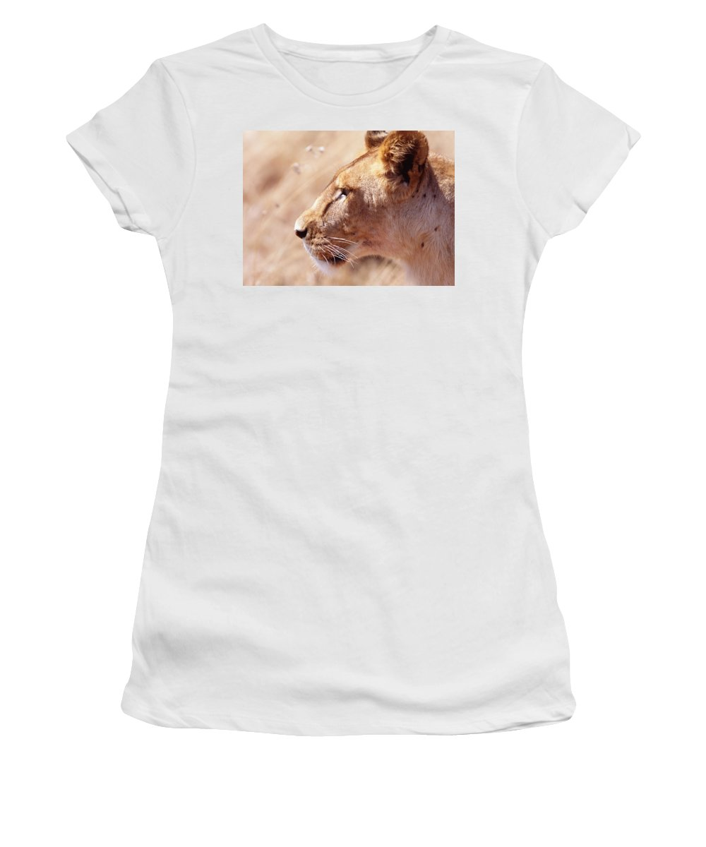 Staring Women's T-Shirt (Athletic Fit) featuring the photograph Lioness Staring Intently At Passing by Axiom Photographic