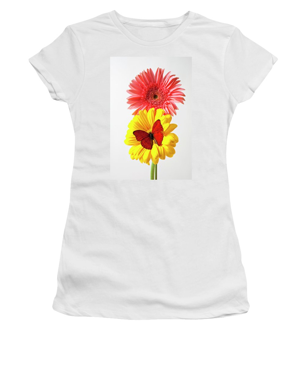 Mums Women's T-Shirt (Athletic Fit) featuring the photograph Pink And Yellow Mums by Garry Gay