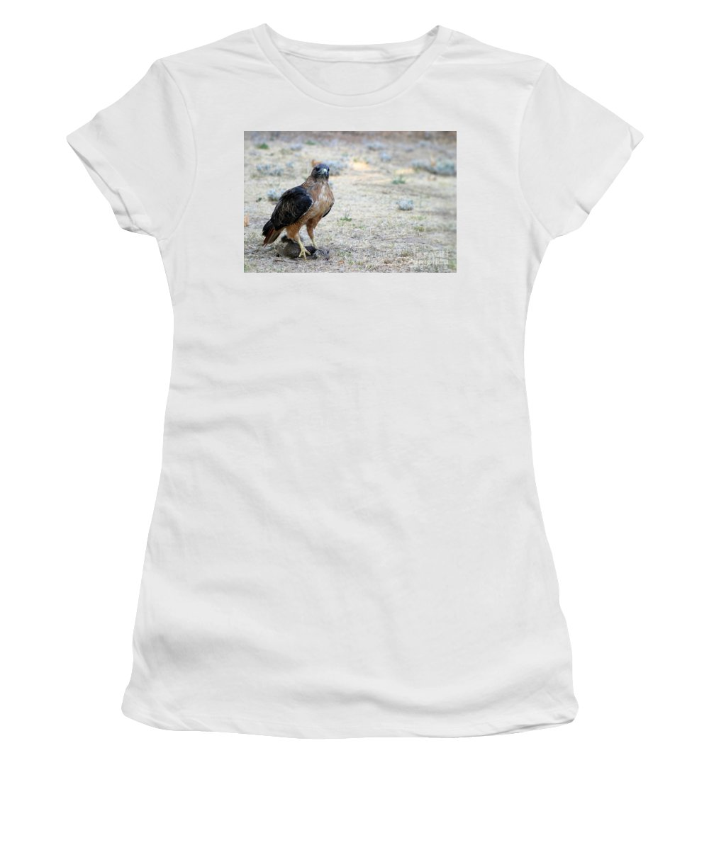 Animal Women's T-Shirt (Athletic Fit) featuring the photograph Red Tailed Hawk Catch by Henrik Lehnerer