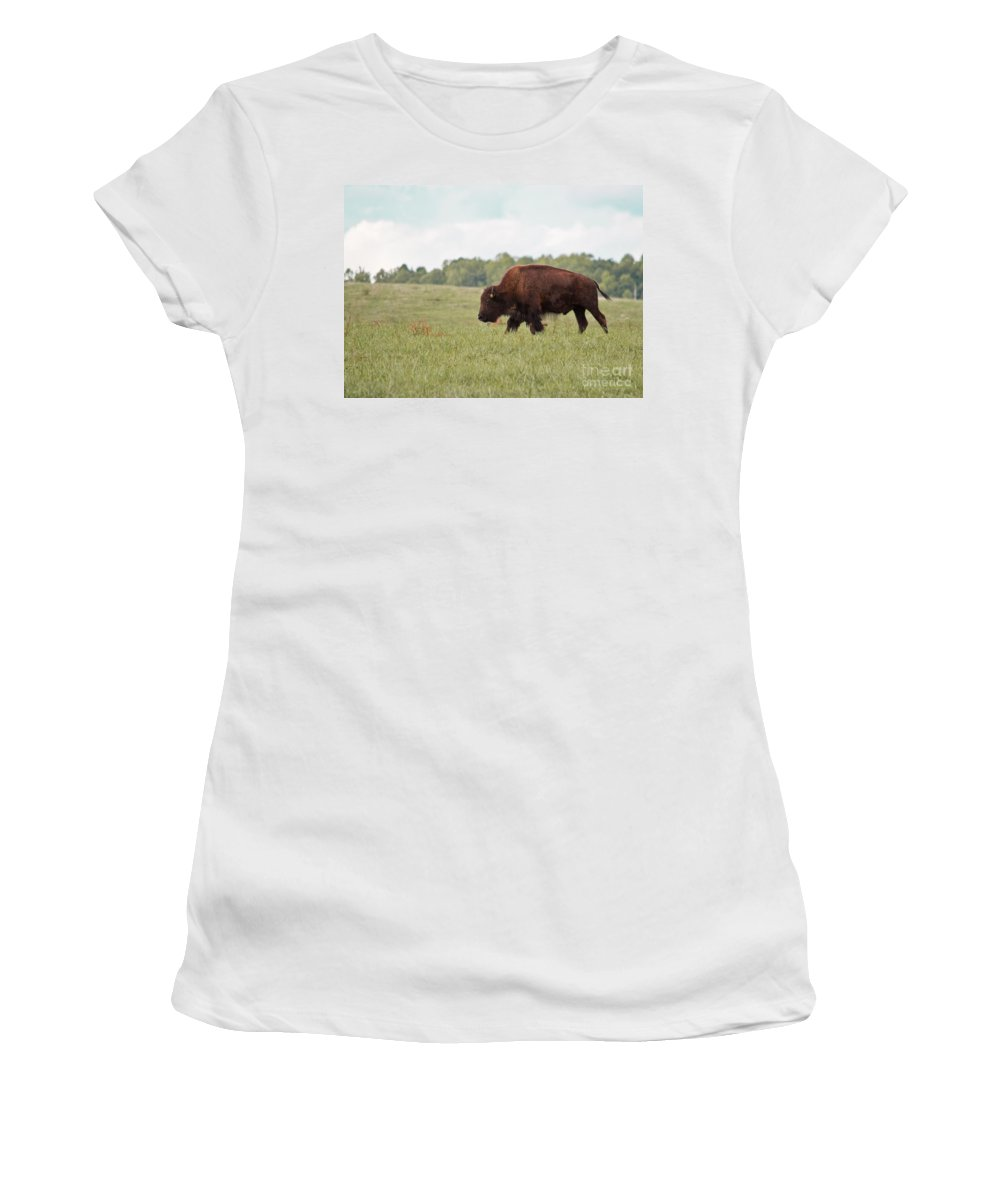 Buffalo Women's T-Shirt (Athletic Fit) featuring the photograph Roaming The Plains by Scott Hervieux