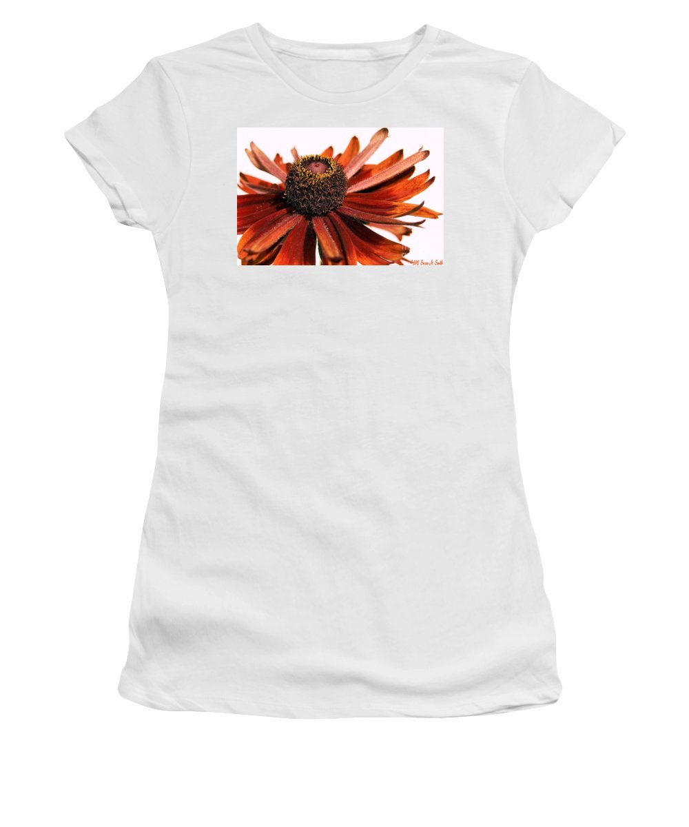 Flowers Women's T-Shirt (Athletic Fit) featuring the photograph Single Susan by Susan Smith