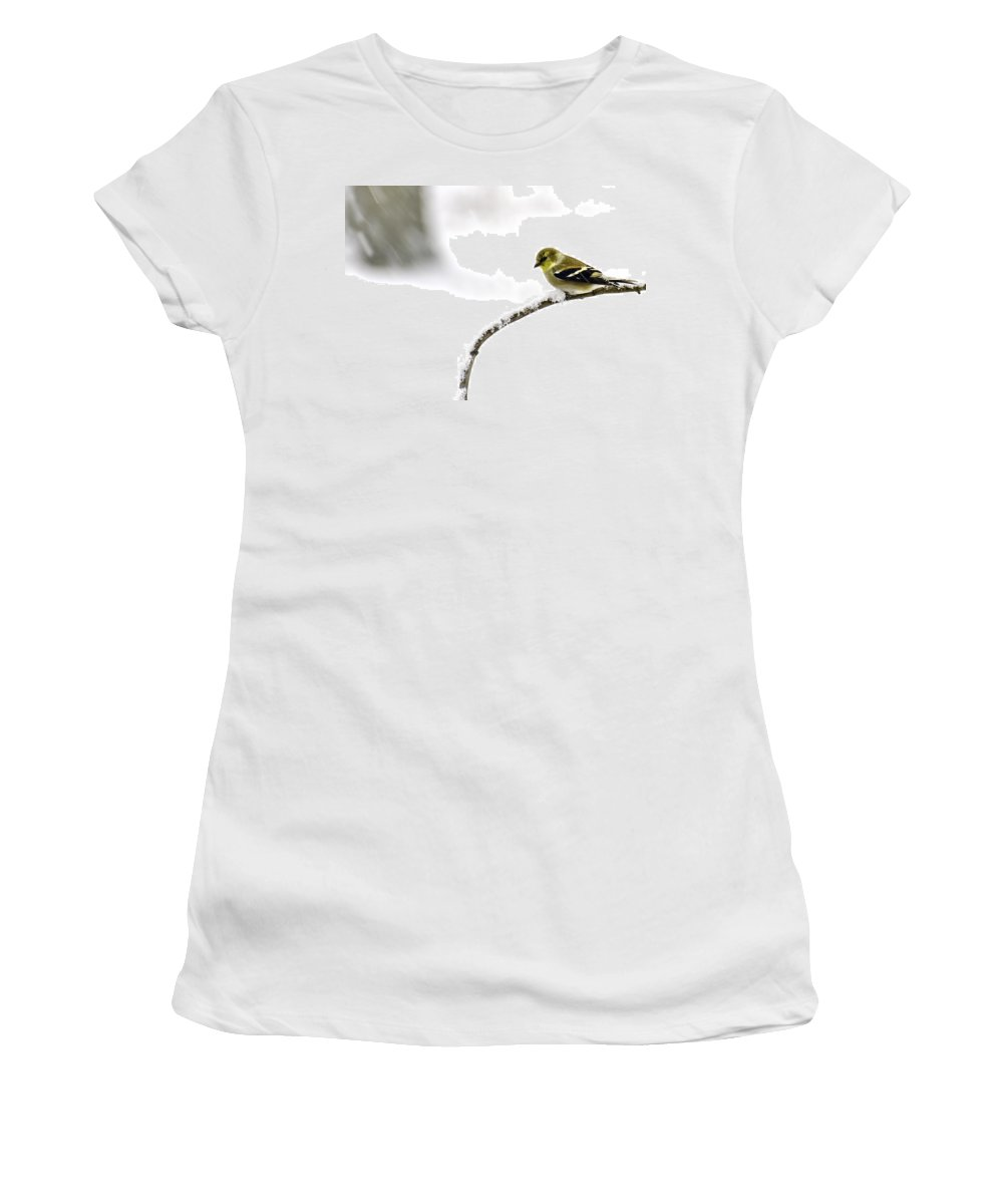 Snow Women's T-Shirt (Athletic Fit) featuring the photograph Snow Bird In The Storm by LeeAnn McLaneGoetz McLaneGoetzStudioLLCcom