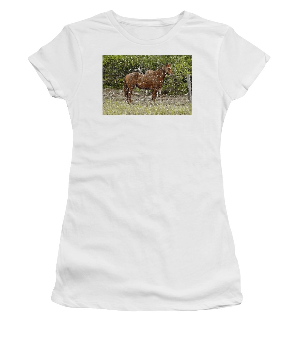 Horse Women's T-Shirt (Athletic Fit) featuring the photograph Strong Always by Dinah Anaya