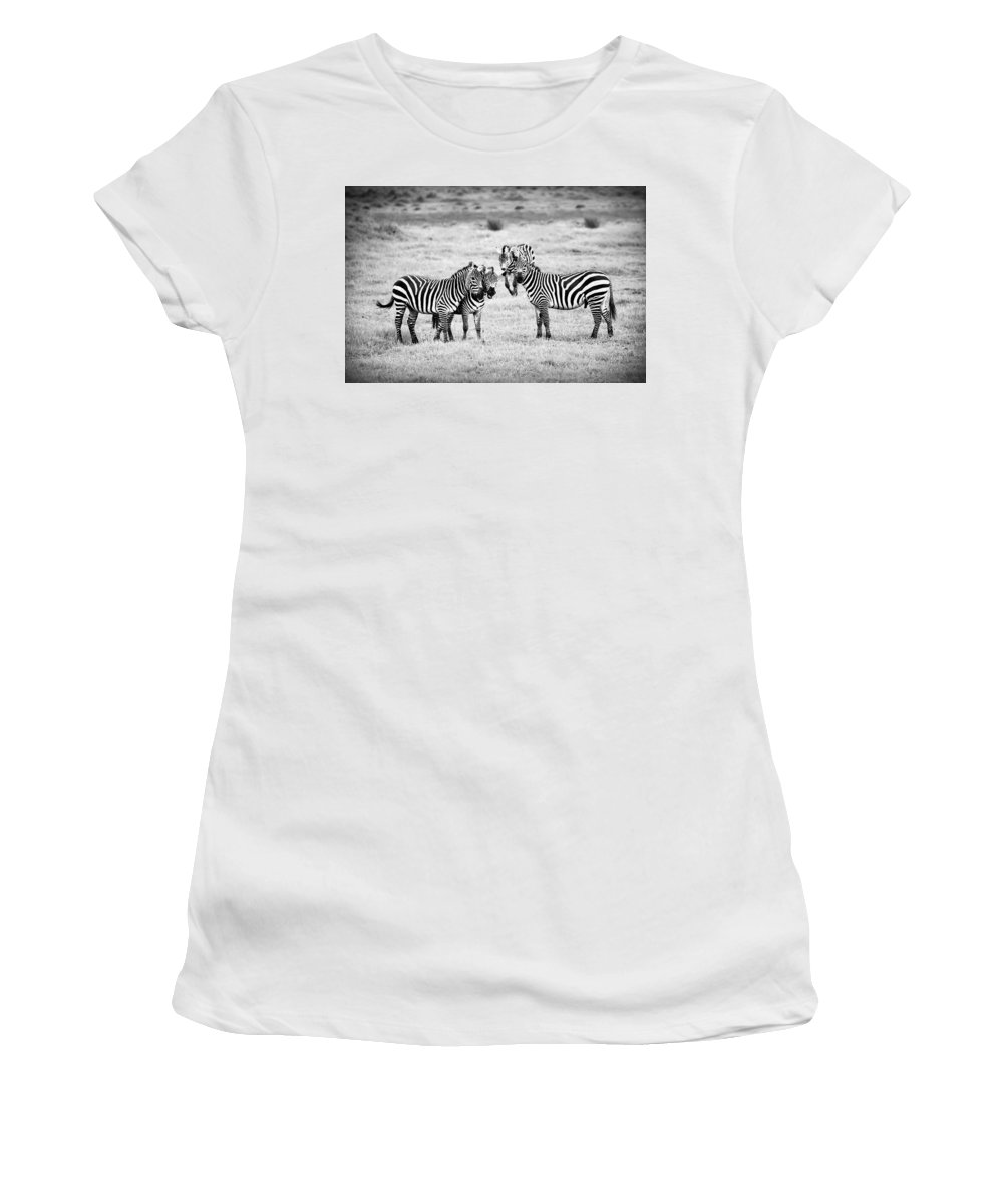 Africa Women's T-Shirt (Athletic Fit) featuring the photograph Zebras In Black And White by Sebastian Musial
