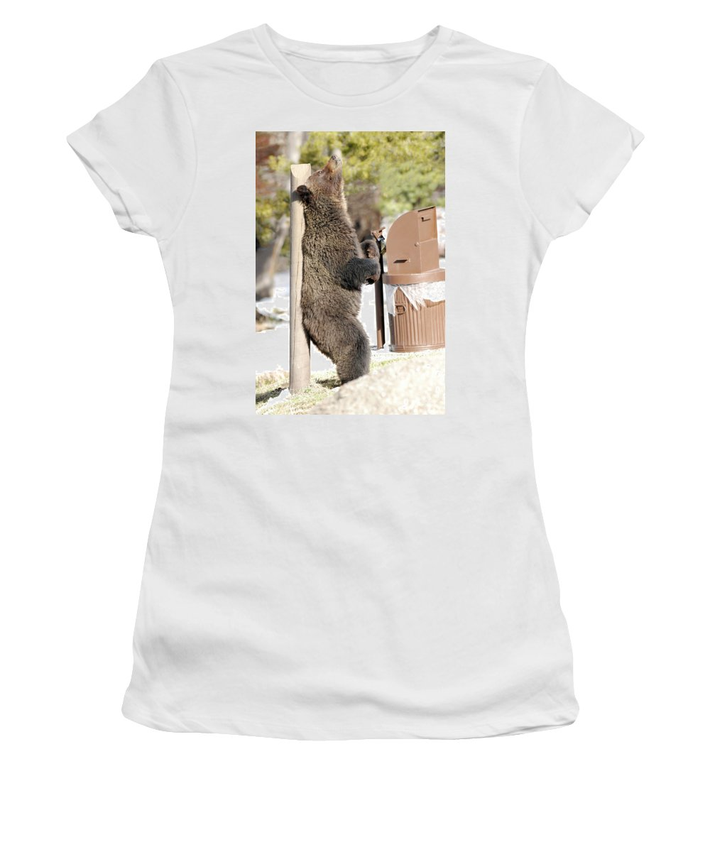 Yellowstone Women's T-Shirt (Athletic Fit) featuring the photograph 060510-grizzly Back Scratch by Pamela Talasco