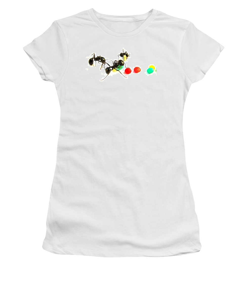 Ants Women's T-Shirt featuring the photograph Ants by Israel Captures