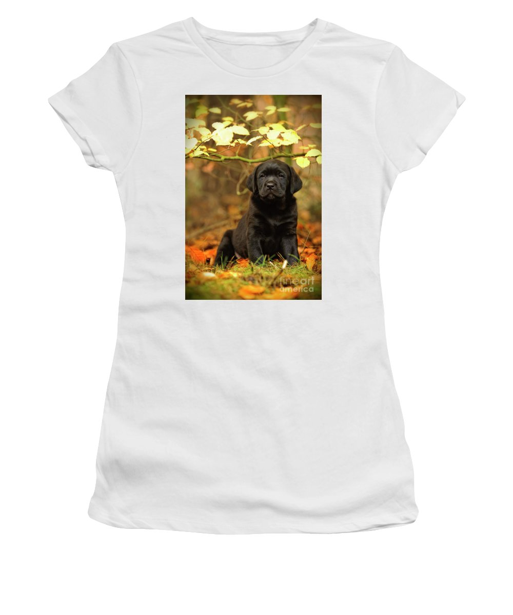 Labrador Retriever Women's T-Shirt (Athletic Fit) featuring the photograph Black Labrador Retriever Puppy by Waldek Dabrowski