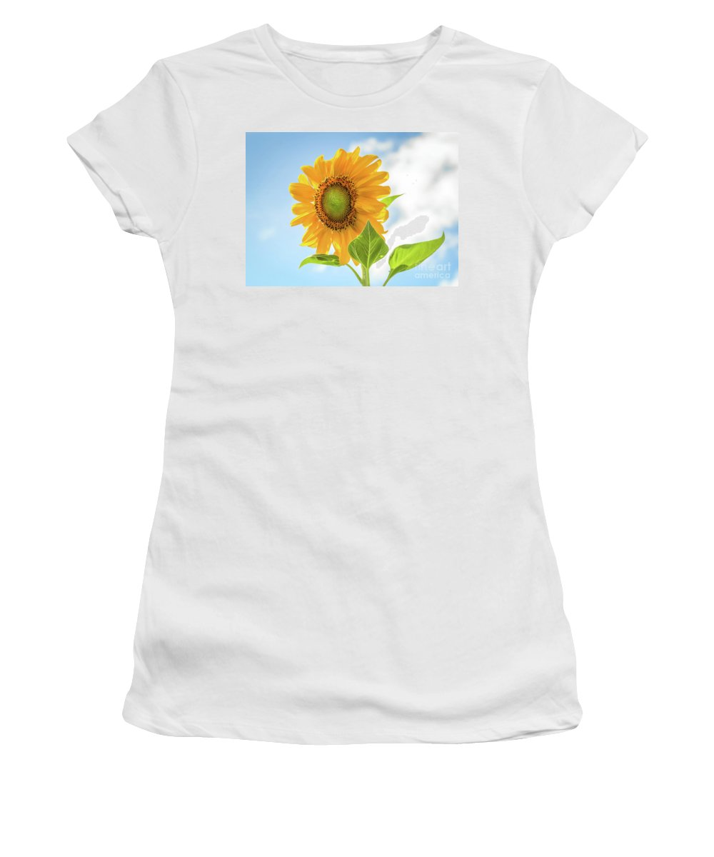 Sunflower Women's T-Shirt featuring the photograph Blowing In The Wind by Janet Barnes