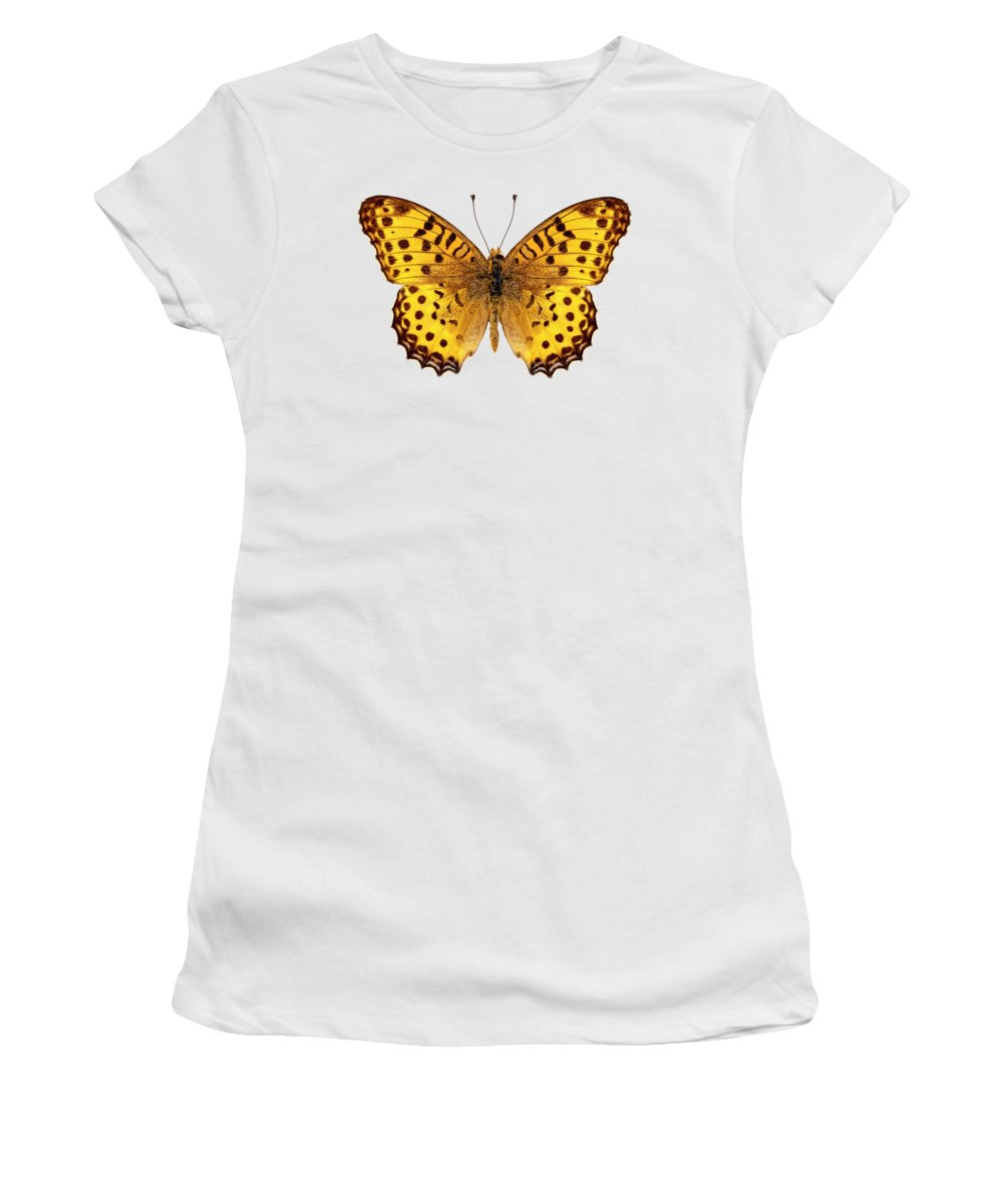 Asia Women's T-Shirt featuring the painting Butterfly Species Argynnis Hyperbius by Pablo Romero