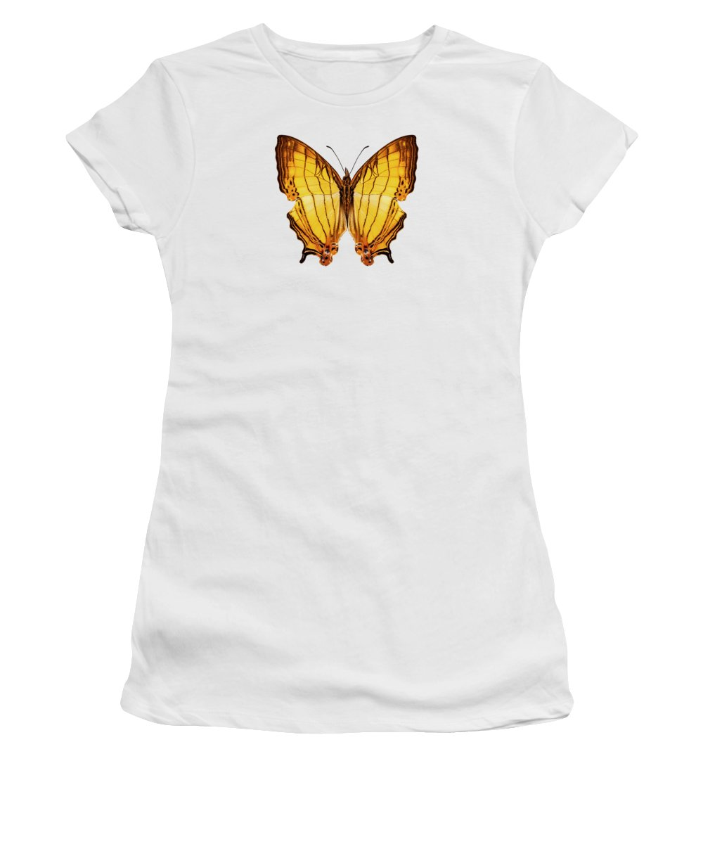 Amathusia Women's T-Shirt featuring the painting Butterfly Species Cyrestis Lutea by Pablo Romero