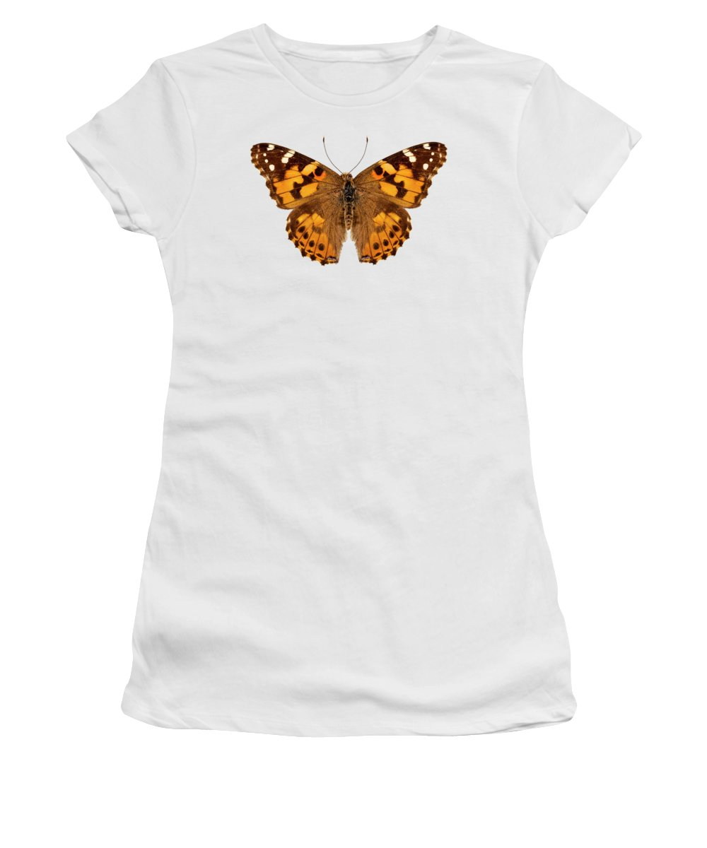 Indonesia Women's T-Shirt featuring the painting Butterfly Species Vanessa Cardui by Pablo Romero