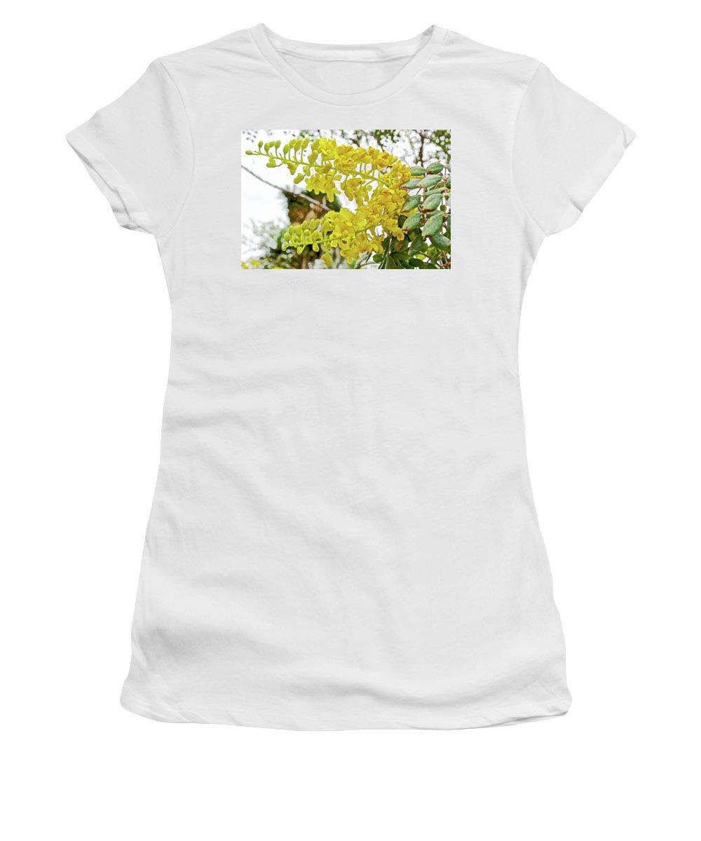 Caesalpinia Cacalaco In Huntington Gardens In San Marino Women's T-Shirt featuring the photograph Caesalpinia Cacalaco In Huntington Desert Gardens In San Marino-california by Ruth Hager