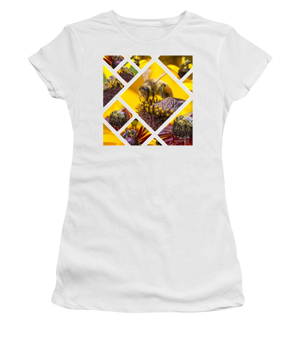 Honey Women's T-Shirt (Athletic Fit) featuring the photograph Collage Of Western Honey Bee by Mariusz Prusaczyk