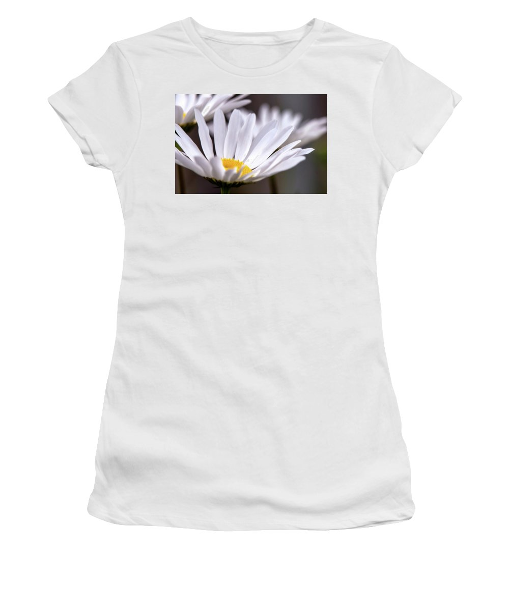 Nature Women's T-Shirt featuring the photograph Daisy Dreams by Linda Shannon Morgan