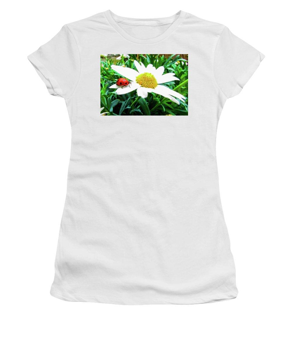 Daisy Flower Women's T-Shirt featuring the photograph Daisy Flower and Ladybug by Cesar Vieira