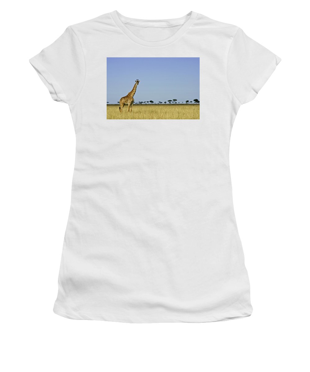 Africa Women's T-Shirt (Athletic Fit) featuring the photograph Majestic Giraffe by Michele Burgess