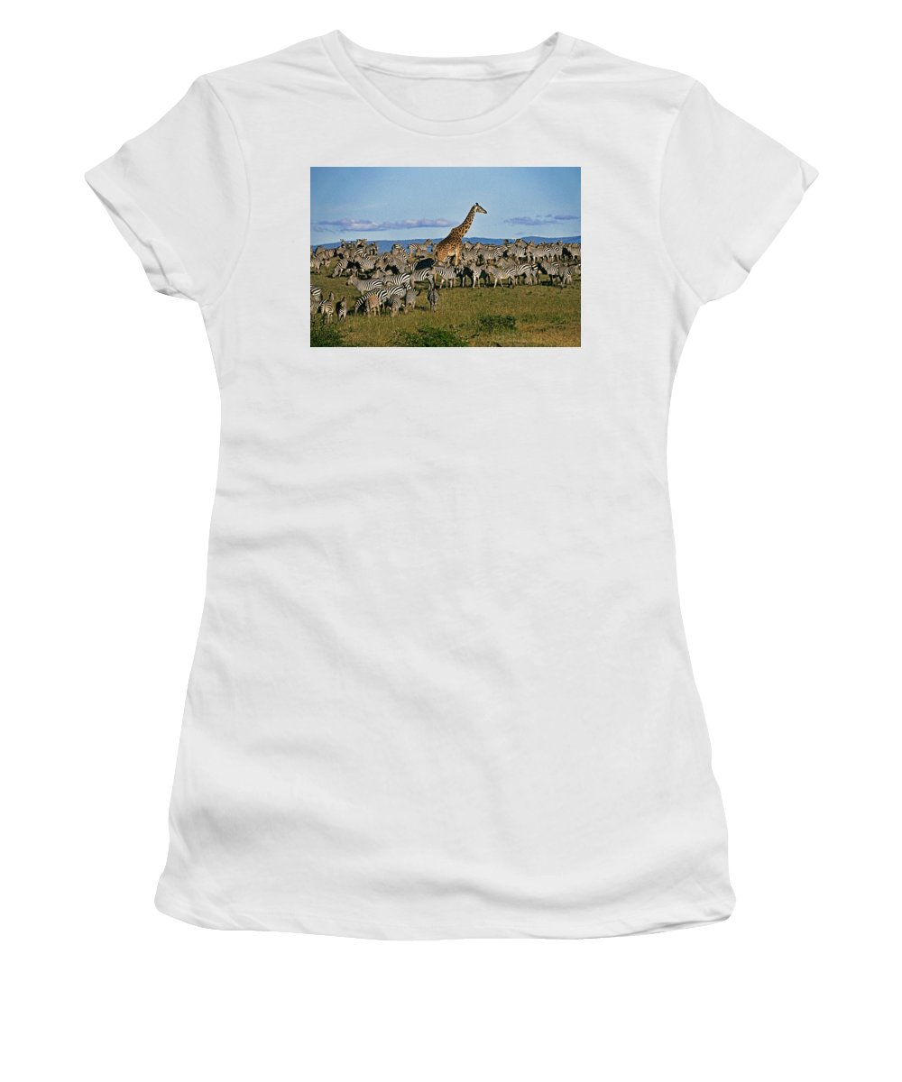Africa Women's T-Shirt (Athletic Fit) featuring the photograph Odd Man Out by Michele Burgess