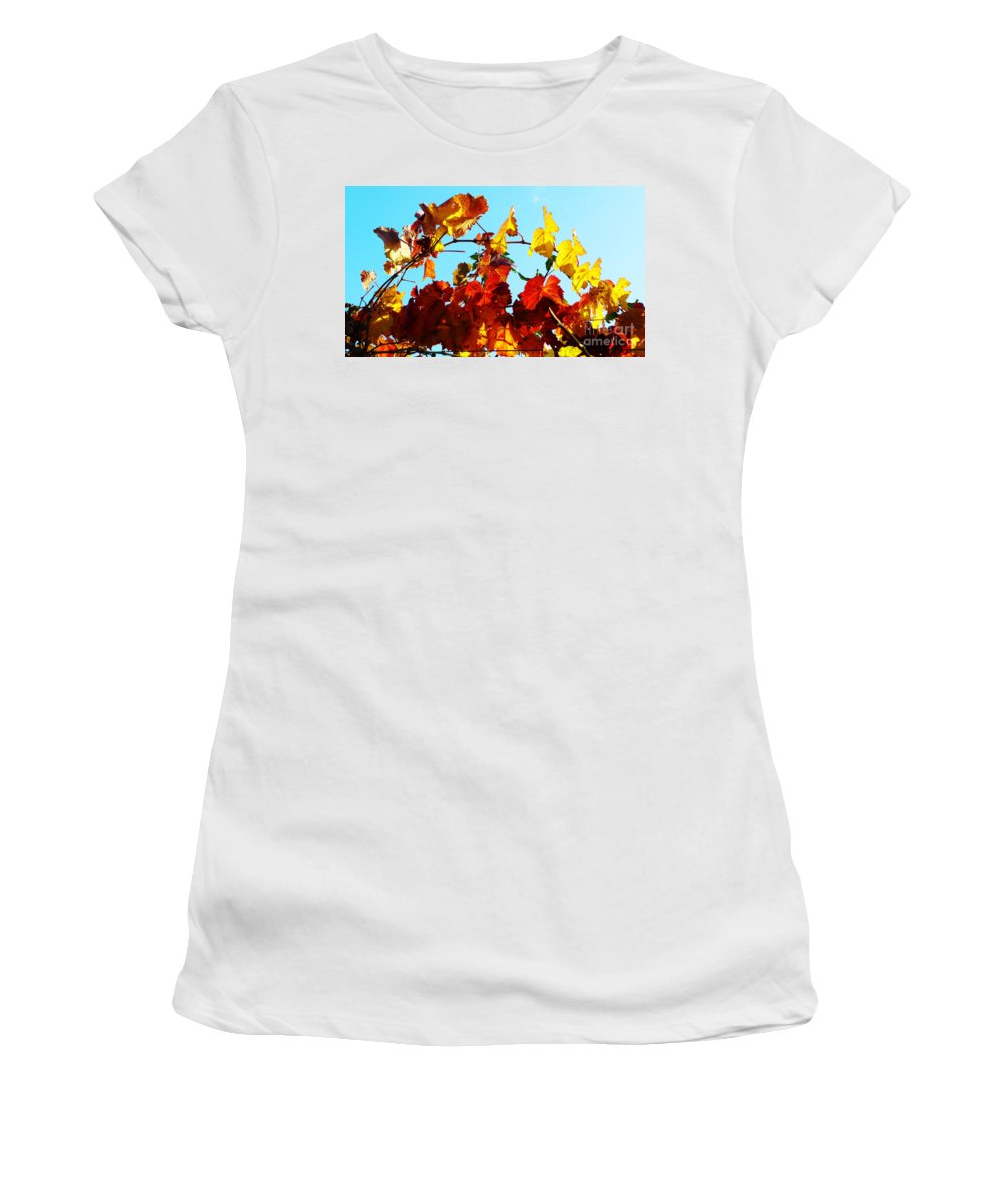 Grape Vineyard Women's T-Shirt (Athletic Fit) featuring the photograph Vineyard 12 by Xueling Zou